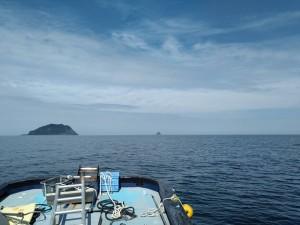 左に大島右に小島